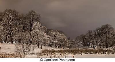 Snowy beautiful winter night on the background of the forest.