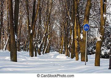 snowy bike path