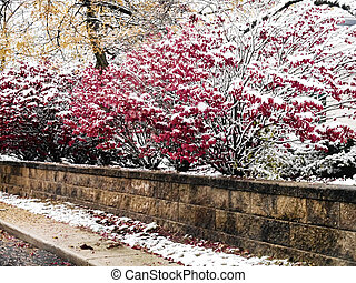 Snowy boundary - Snow-covered limestone wall and colorful ...