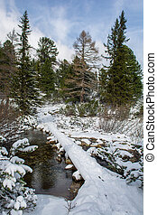 Snowy Bridge Over Creek in Winter Landscape