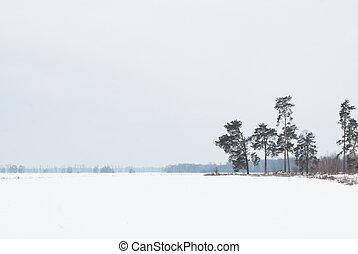 Snowy desert, winter deserted landscape,
