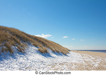 Snowy Dune - Dune scene with beach grass and snow along a ...