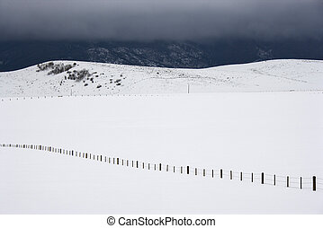 Snowy field with fence.