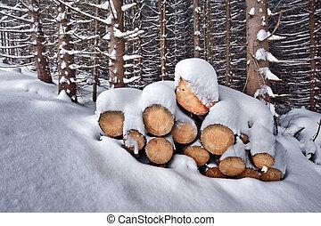 snowy firewoods in winter forest