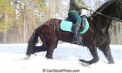 Snowy forest at spring. A woman riding a horse. Mid shot
