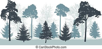 Snowy forest in winter, silhouette of trees (pines, spruces, oak, etc.). Vector illustration.