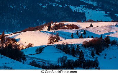 snowy forested hills in morning light. beautiful nature...