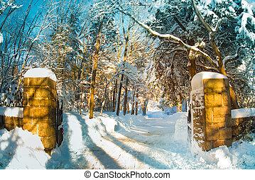 Snowy Gated Driveway