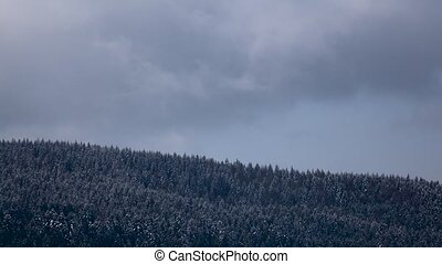 Snowy gray clouds form over forest in mountains. Time lapse