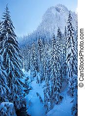 Snowy Ice Blue Stream Snow Mountain Cascade Mountains Snoqualme Pass Washington