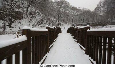 Snowy Korean Mountains Glide Cam - POV glidecam shot walking...