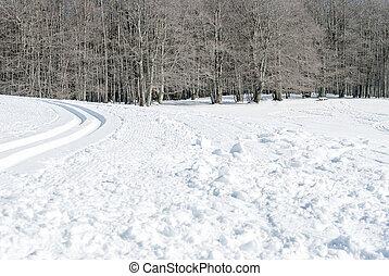 snowy landmark in a sunny winter day