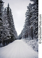 Snowy landscape in Central Finland