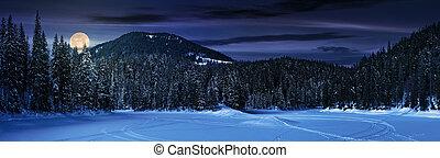 snowy meadow in winter spruce forest at night - snowy meadow...