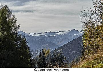 snowy mountain in winter
