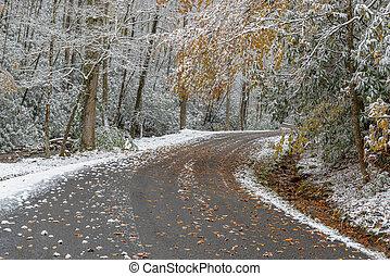 Snowy Mountain Road