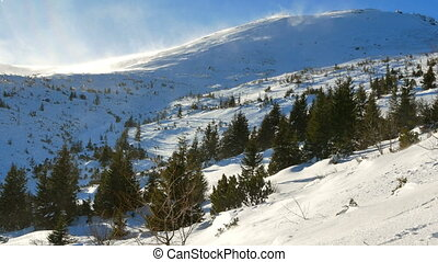 Snowy mountains winter