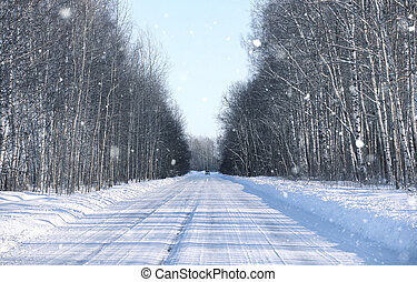 snowy on empty rural road in forest in winter day