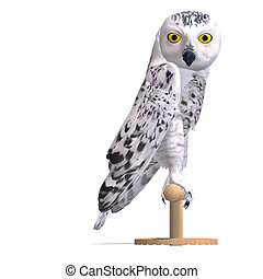 Snowy Owl Bird. 3D rendering with clipping path and shadow over white