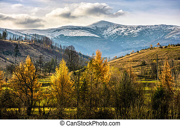 snowy peaks over autumn forest - high mountains snowy peaks...