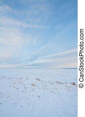 Snowy Portrait Prairie Landscape