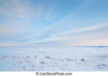 Snowy Prairie
