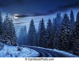 snowy road through spruce forest at night - winter mountain...