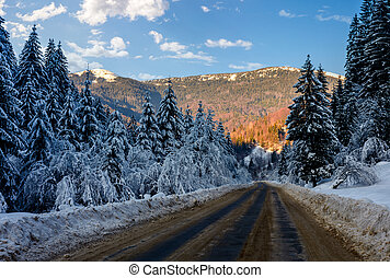 snowy road through spruce forest at sunset - winter mountain...