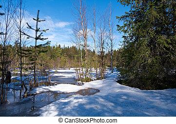Snowy spring landscape