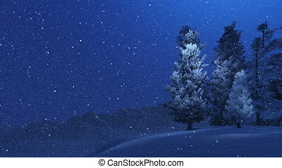 Snowy spruces and snowfall at night