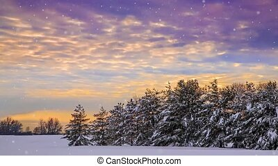 Snowy Sunset Loop