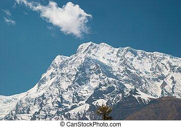 Snowy Tibetan mountains, view from Annapurna trek