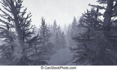 Snowy trek