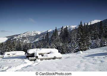 Snowy view in Tatra Mountains, winter landscapes series.