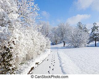 Snowy Walkway - Footprints line a walkway covered in fresh ...