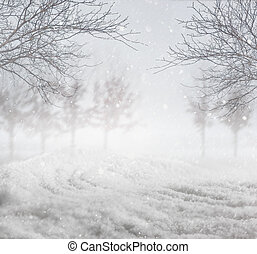 Snowy winter background - Snowy nature winter background