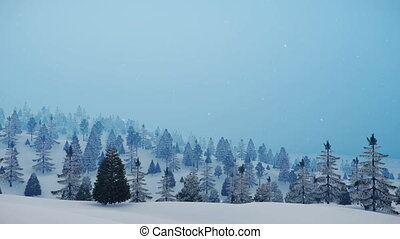 Snowy winter fir forest at slight snowfall 4K