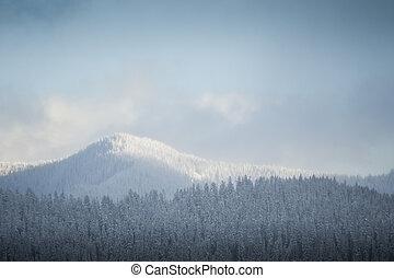 Snowy winter hills