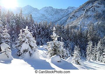 snowy winter landscape in the alps