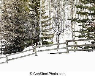 Snowy winter landscape.