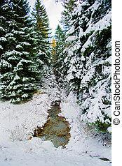 Snowy Winter Landscape with Creek in Austria