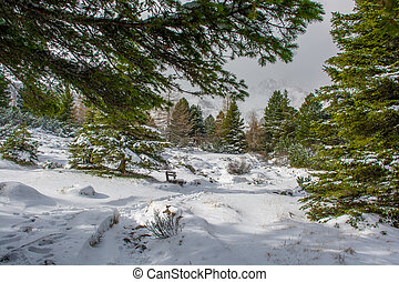 Snowy Winter Landscape with Hiking Trail in Austria
