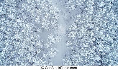 Snowy winter nature