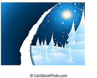 Snowy winter night landscape