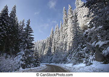 Snowy Winter Road in the Mountain