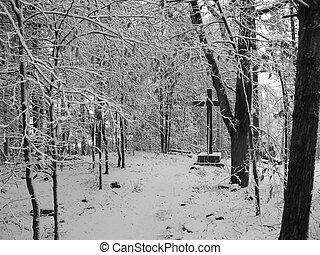 snowy worship