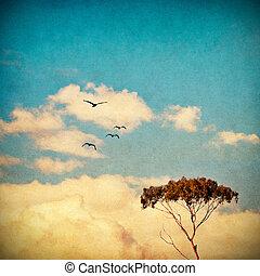 soñador, cielo, y, árbol