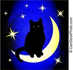 soñar, gato