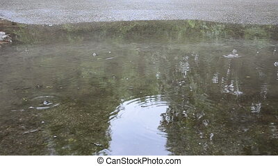 soak bog car reflection - Water pool soak bog after rain and...