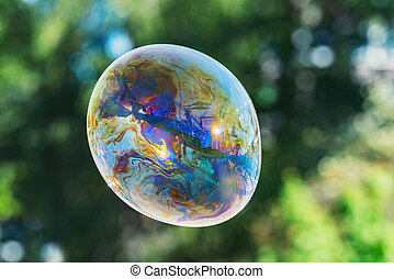 Soap bubble with rainbow colors on trees background.